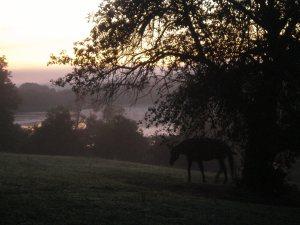 8.24.09 Sunrise.